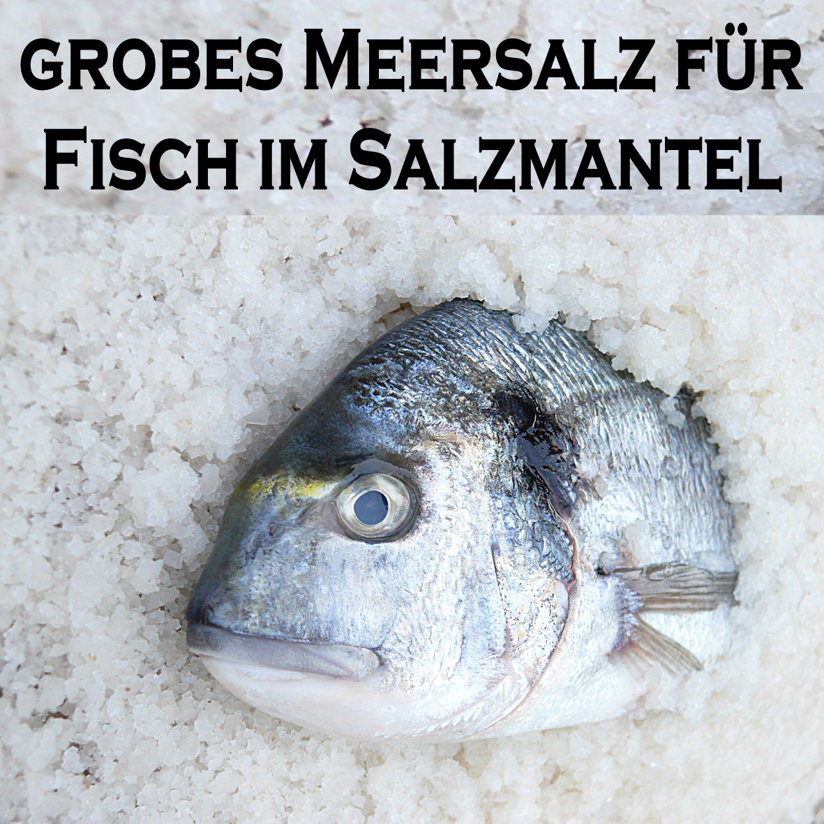 Fisch Im Salzmantel